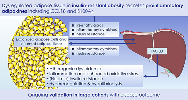 Identification of adipokines related to insulin resistance